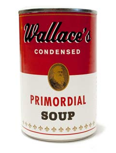 primordial-soup