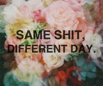 same-shit
