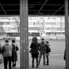 Developare manuală film alb-negru - unde înveţi